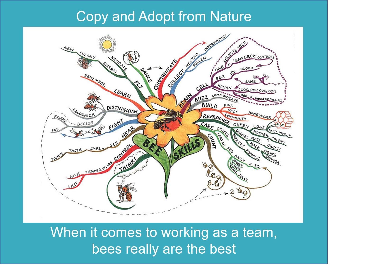 Beekeeper Edge