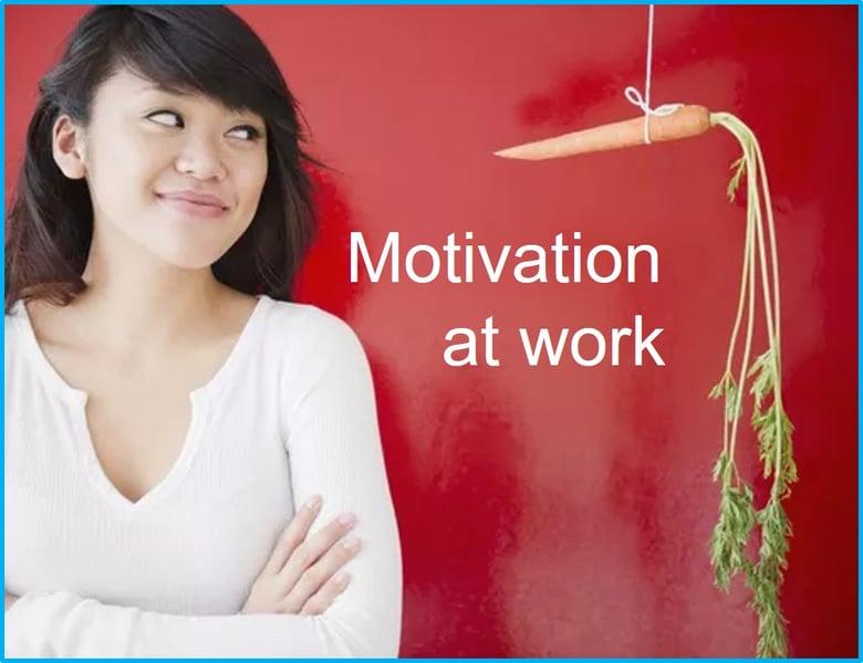 Intrinsic Motivation at work Tacomob 16Dec19