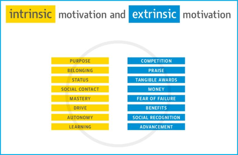 Intrinsic vs extrinsic motivation Published 14Feb19